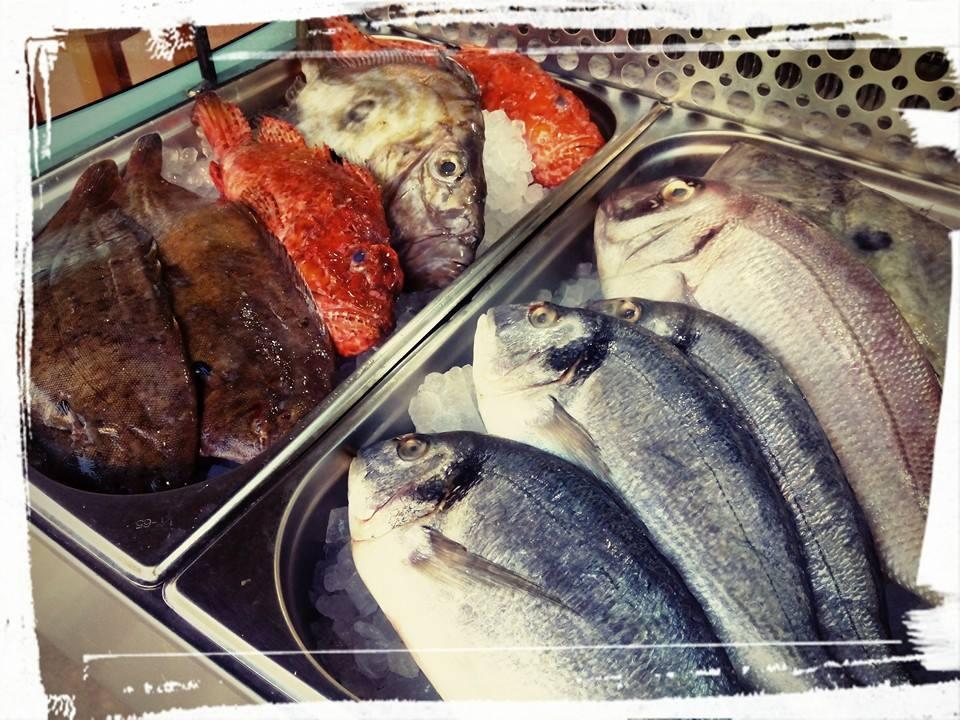 Vis van de dag.