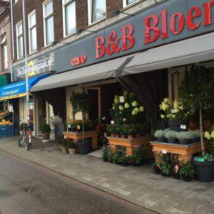 B&B Bloemen Schoterweg
